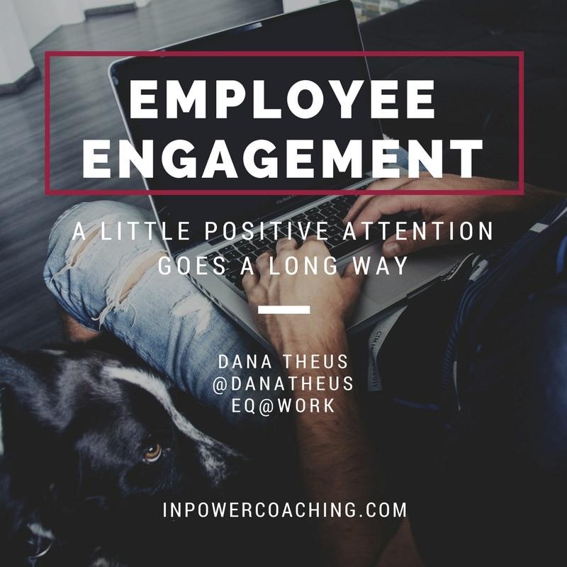 3 Things My Dog Reminded Me About Employee Performance and Employee Engagement